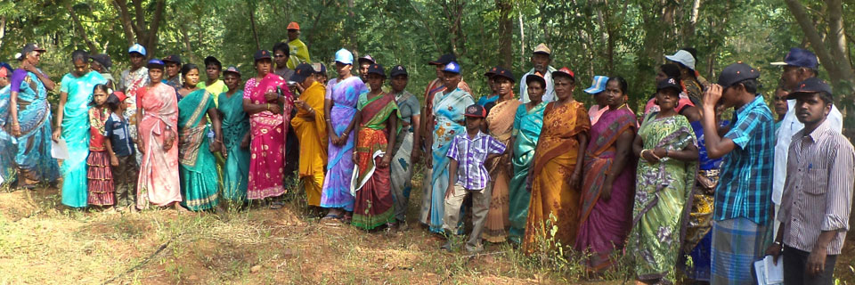 Tree plantation in trichy